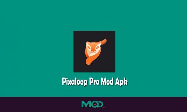 Pixaloop Pro Mod Apk